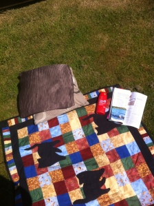This sunbathing station was not set up until at least 1,000 words had been written, oh no it wasn't...